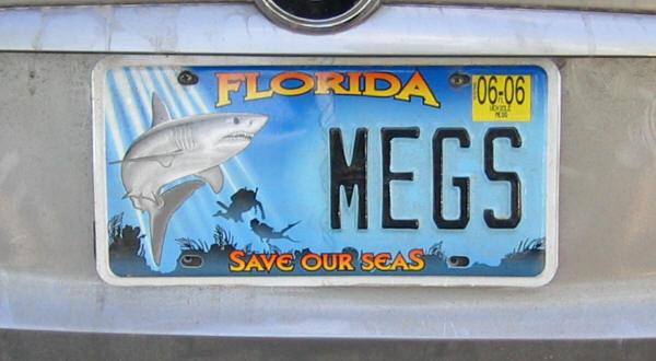 Les américains et leurs plaques Florida15